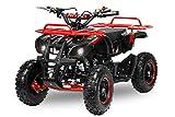 Kinder Miniquad Torino 49cc 6' 2-Takter Kinderquad Pocketquad Quad Pocket Kinderfahrzeug (Rot)