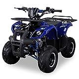 Kinder Quad S-8 Farmer 125 cc Motor Miniquad 125 ccm Toronto (Blau)